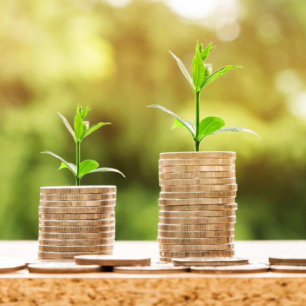 Start a regular saving pattern at Kilmallock Credit Union
